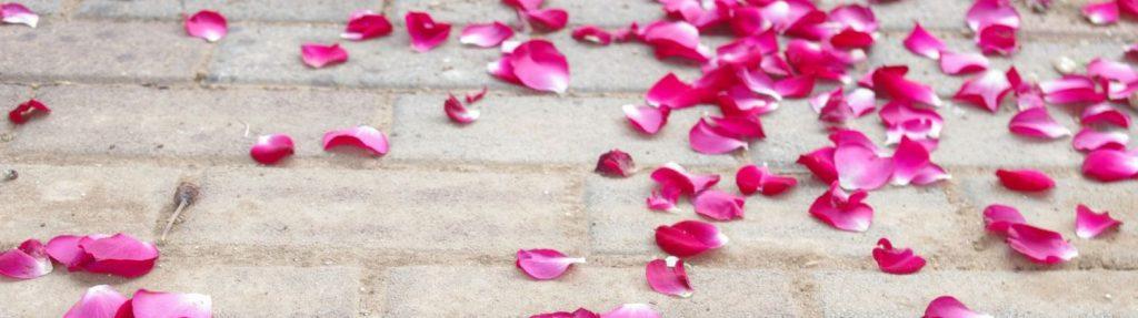 HP_Hochzeit_Blütenblätter